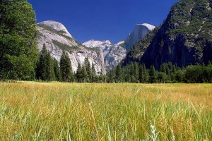 image of Yosemite valley