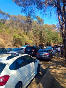Griffith Park - western Canyon Rd