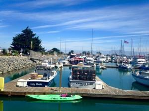 Channel Island Marina