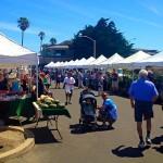 Channel Island Farmer's Market