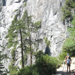 Yosemite Falls Trails